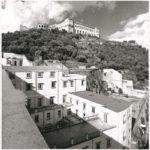 Macchia mediterranea tra Suor Orsola e la Certosa di San martino