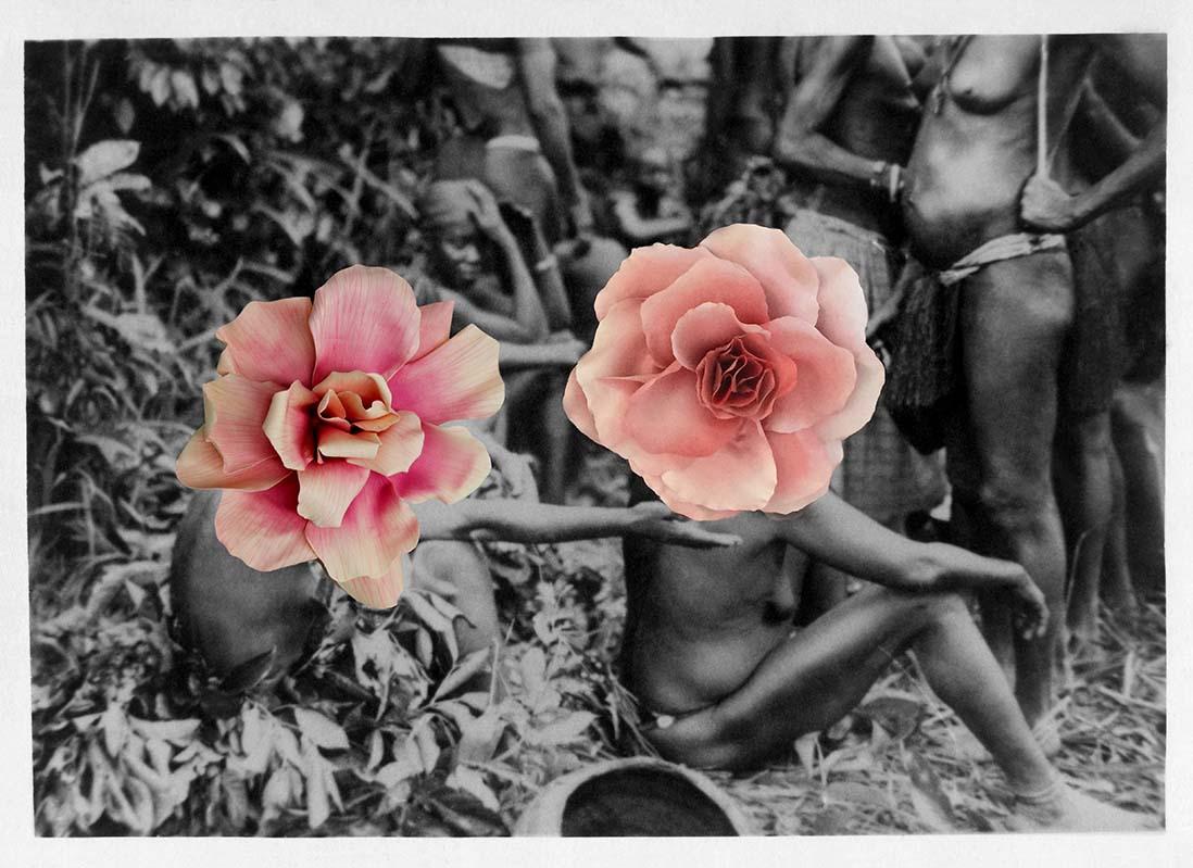 Owanto Flowers X